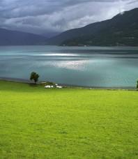 Perles de la Norvège : des fjords aux glaciers