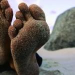 Les pieds dans l'eau, la tête dans les montagnes et les doigts de pieds en éventail